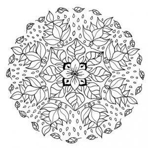 Mandala bonita 3
