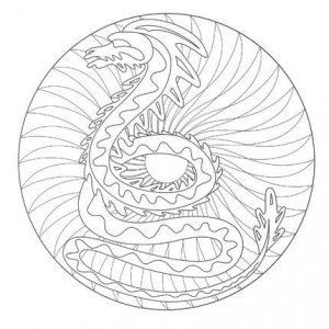 Mandala dificil 5