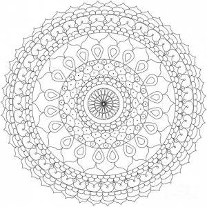 Mandala imp 2016 6